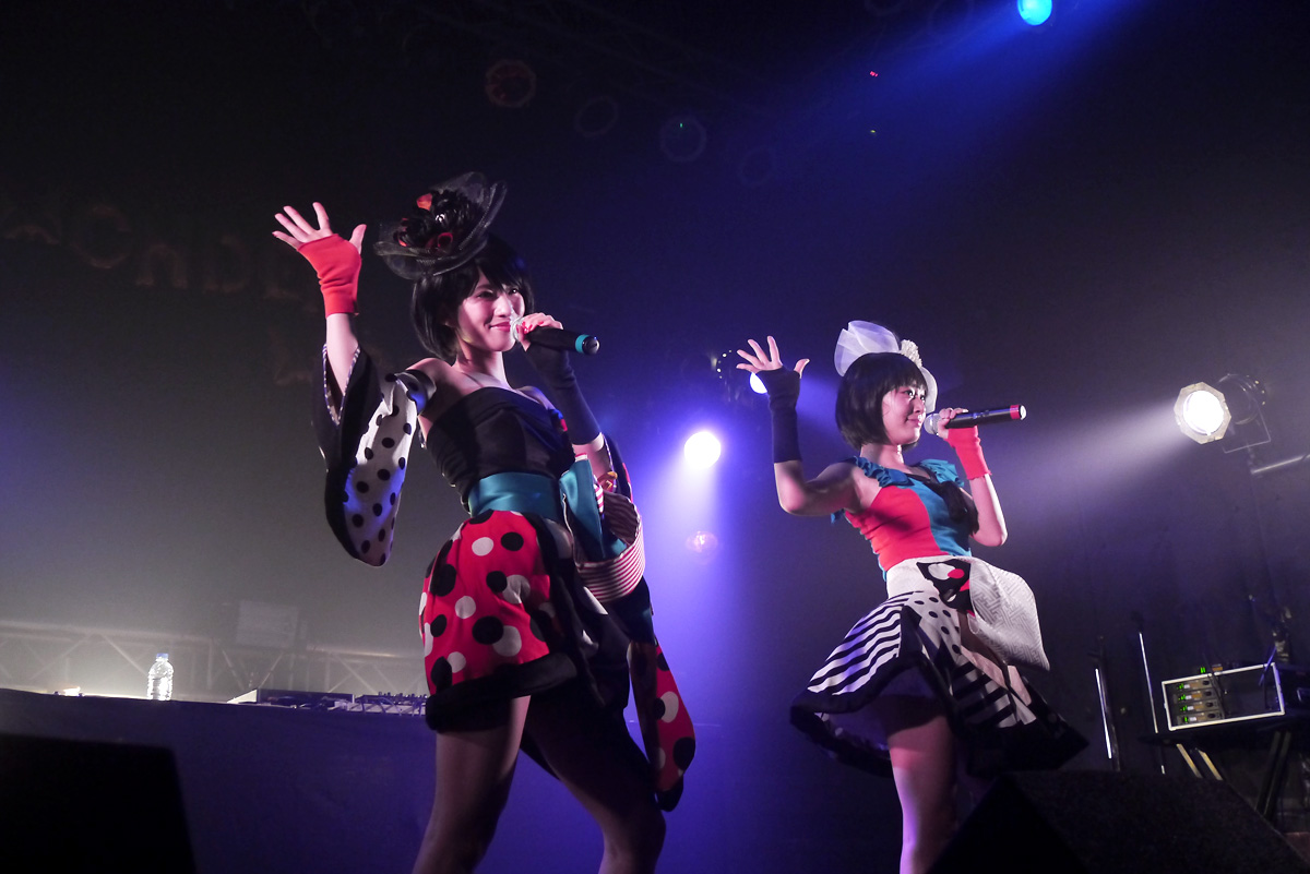 NekoPOP-YANAKIKU-Osaka-2016-02-30426
