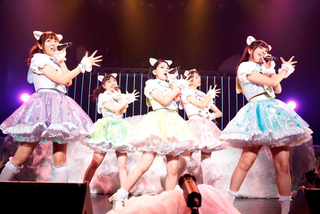NekoPOP-Wasuta-Paradox-World-Tour-Final-1